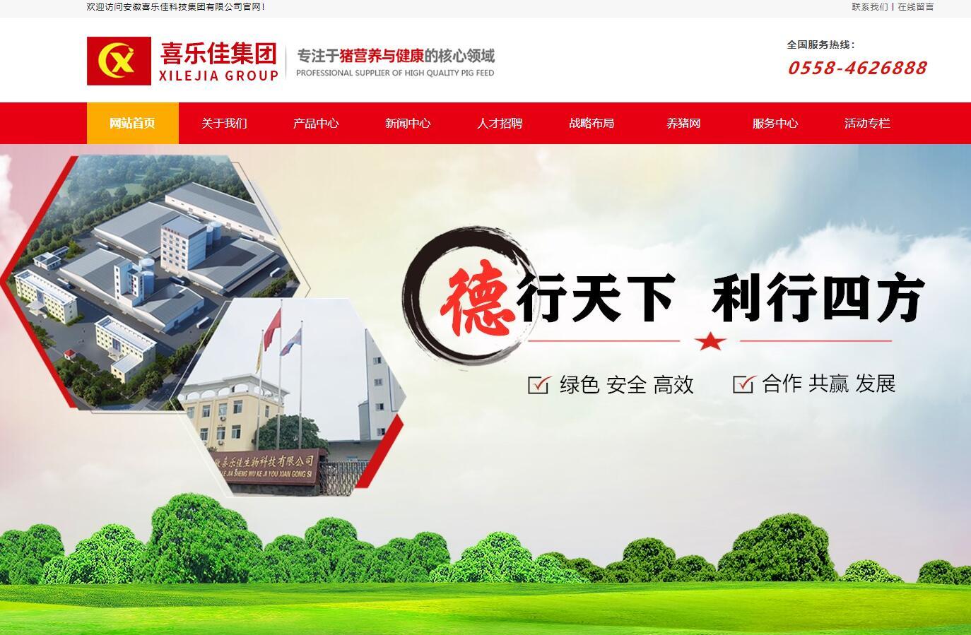 安徽喜乐佳科技集团有限公司